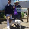 Orange County Fair: Supreme Champion and FFA Grand Champion to Marcus Wood of Sonora FFA and his WRR Krome wether.